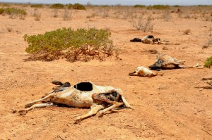 The spectre of drought – a largely man made phenomenon (Oxfam International)